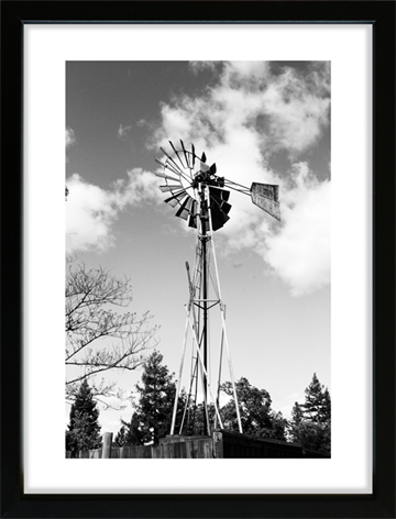 Old Windmill i Californien